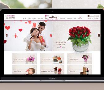 עיצוב ובניית אתר פרלינה